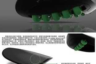2010hongsheng2